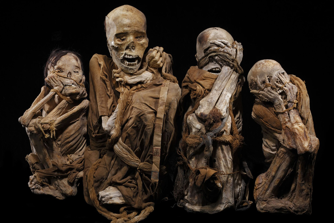 Five centuries ago mummies were bound into bundles, which resulted in contorted poses but made them easier to carry. Modern looters tear off their wrappings, hoping to find gold.