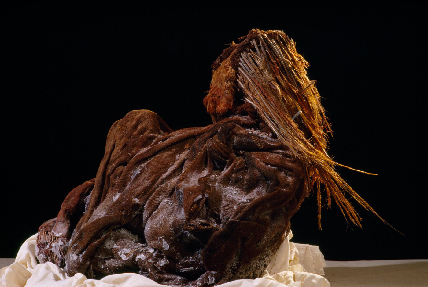 View of the mummy of an eight-year-old Inca girl found on Nevado Ampato. The young child was sacrificed and buried with a variety of offerings to the mountain gods.